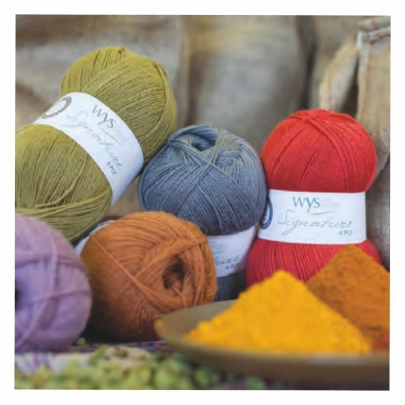 WYS - Signature 4ply - Spice Rack Range - Feines Garn, kräftige Farben