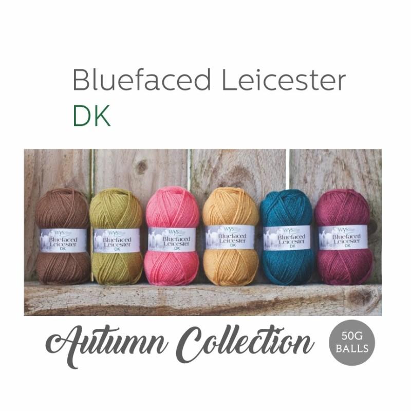 WYS - 100% Bluefaced Leicester DK - Autumn Collection - Premium Wolle in herbstlichen Farben